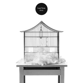 Lost Twin - Birds Album