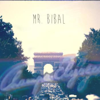 Mr Bibal - Mirror rorriM